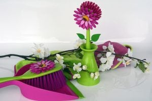 Spring Cleaning Services - Professional Cleaning Company