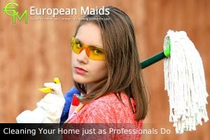 How to Clean Your House Like A Professionals