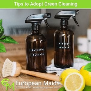 Start Green Cleaning Your Home