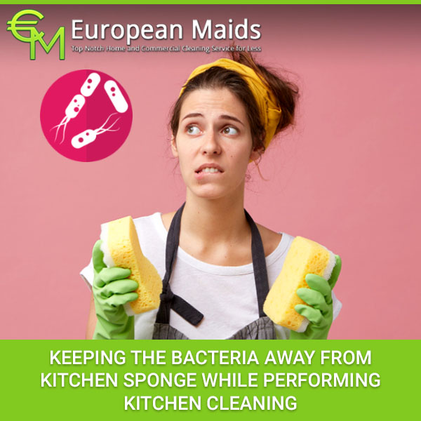 Keeping The Bacteria Away From Kitchen Sponge While Performing Kitchen Cleaning